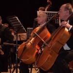 Фестиваль классической музыки Буковинский ноябрь — 2016 состоится в Черновцах