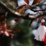 На Буковине праздник встречи весны отметили выставкой